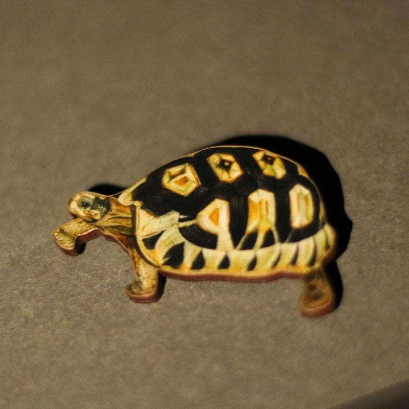 Tortoise Shaped Wooden Brooch